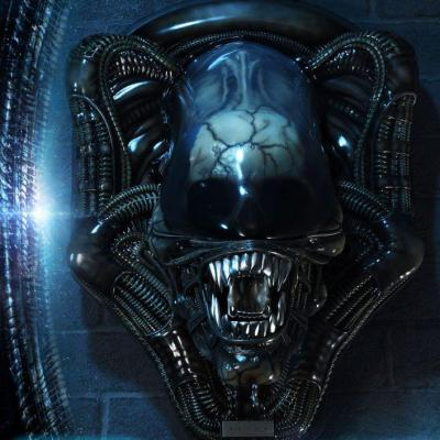 Alien plaque murale 3d warrior head trophy open mouth version 58 cm 2