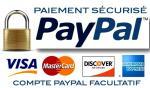 Module de paiement pour e commerce 1405320800