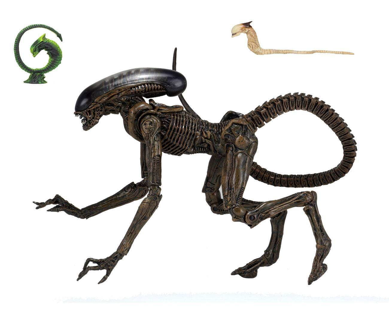 Neca alien 3 figurine ultimate dog 23 cm suukoo toys 1
