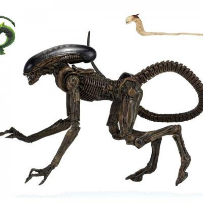 Alien 3 figurine Ultimate Dog Alien 23 cm