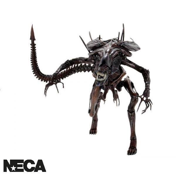 X neca51640 1